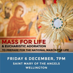 Mass for Life to prepare for the National March for Life.